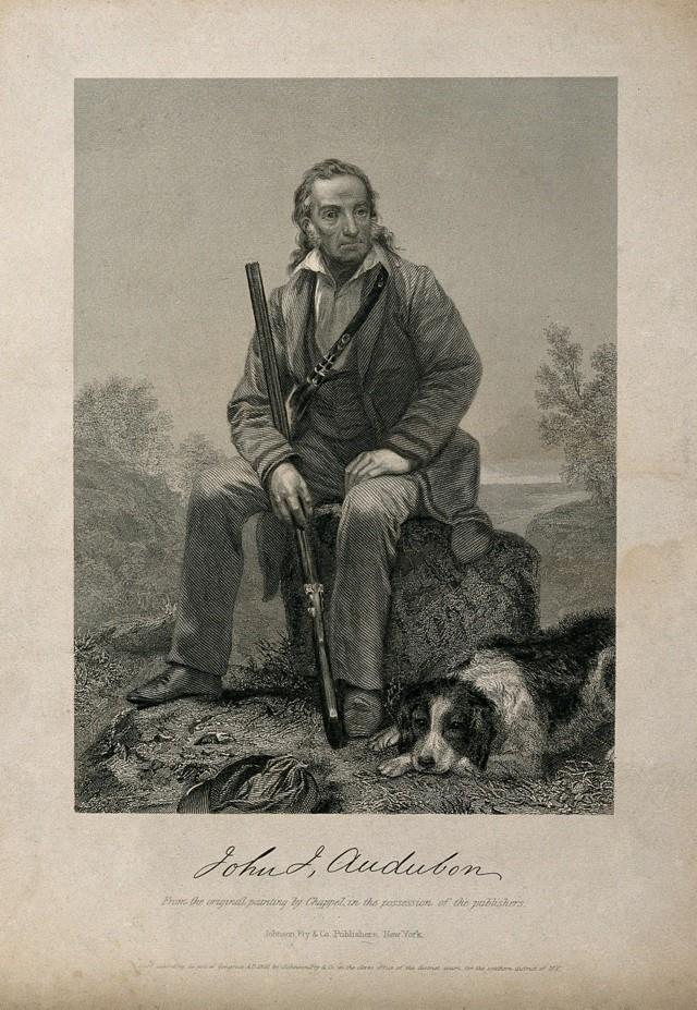 Jean-Jacques Audubon (1785-1851), in una incisione tratta da un dipinto di Alonzo Chappel. Il futuro ispiratore di ecologisti e paladini dell'ambiente, era un cacciatore spietato. Non vi era quasi giorno non facesse strage di volatili, resi in questo modo più docili ai bisogni teatrali del suo talento pittorico.